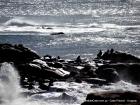 Día del Patrimonio en Cabo Polonio