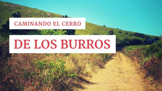 Caminando el Cerro de los Burros