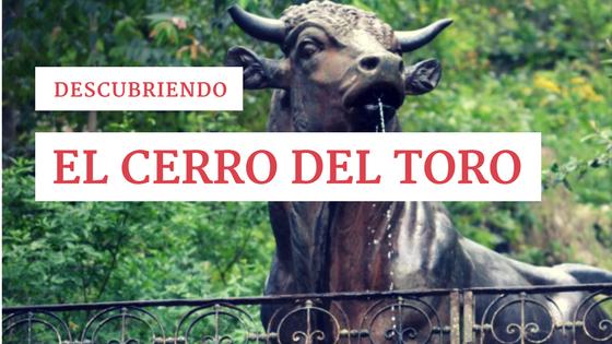 Descubriendo el Cerro del Toro