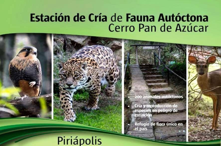 Visitas guiadas en la Estación de cría de fauna y flora autóctona!